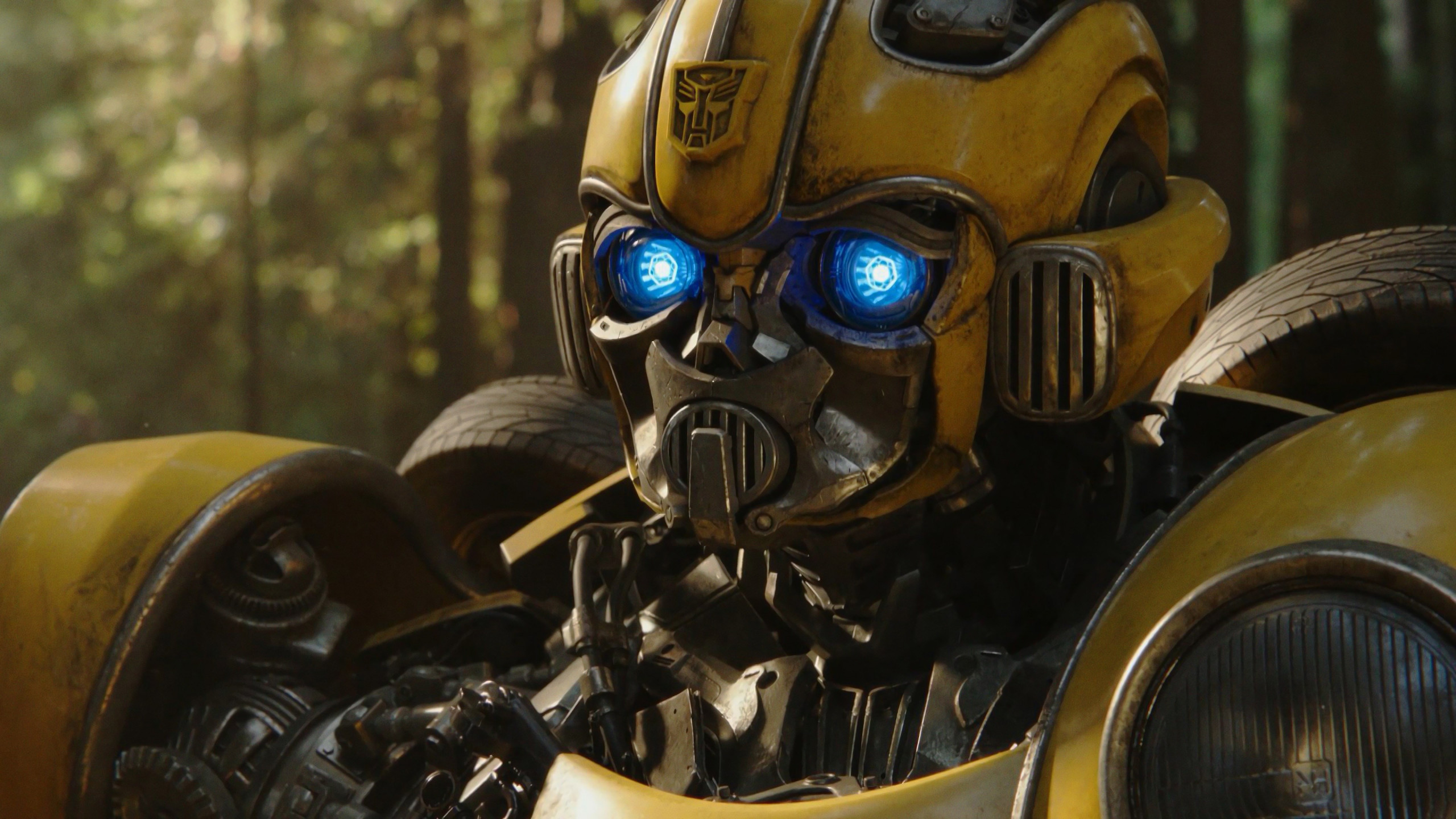 Bumblebee 2018 wallpaper 2560x1440