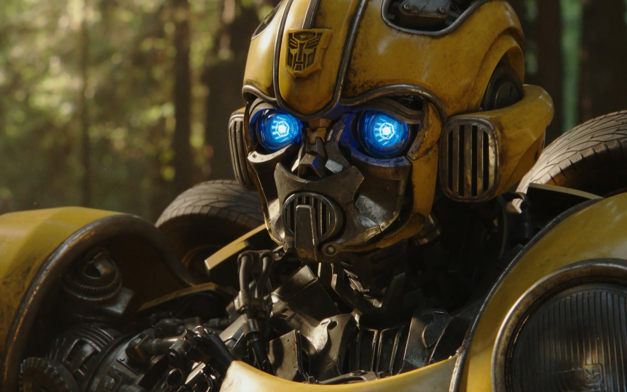 Bumblebee 2018 wallpaper 2560x1600