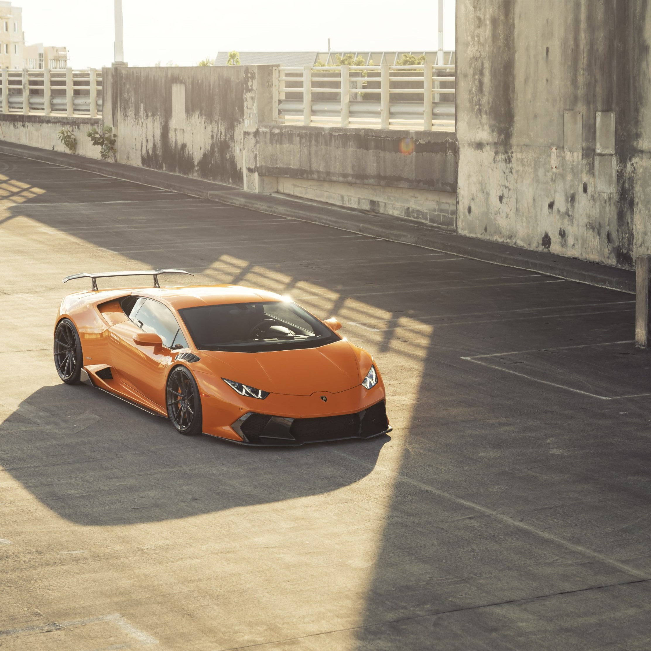 ANRKY Fish Orange Lambo Huracan wallpaper 2224x2224