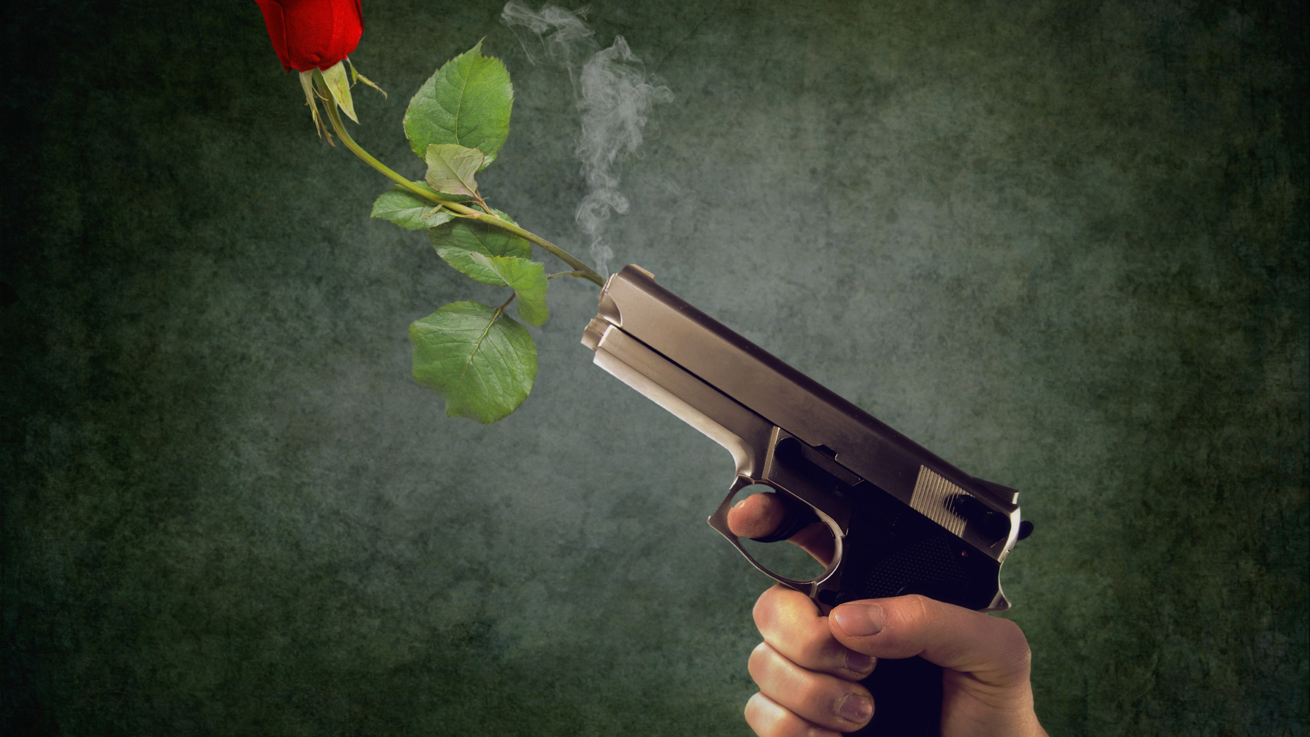 Peaceful act. Pistol and red rose wallpaper 2560x1440