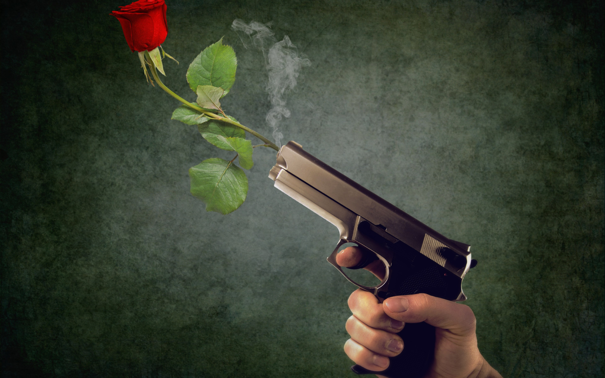 Peaceful act. Pistol and red rose wallpaper 2560x1600