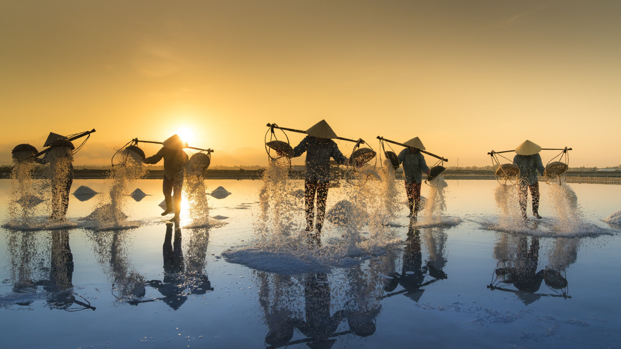 People harvesting salt in Vietnam wallpaper 1280x720