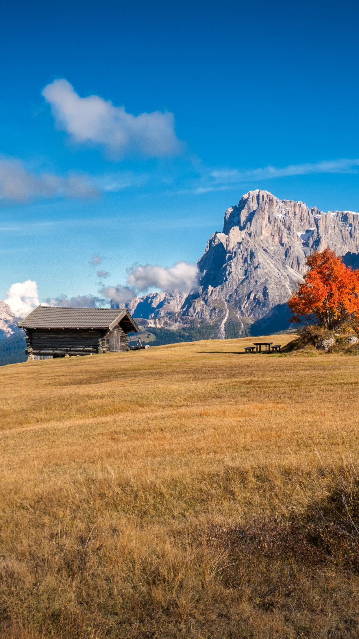 Perfect Autumn landscape from South Tyrol wallpaper 1242x2208