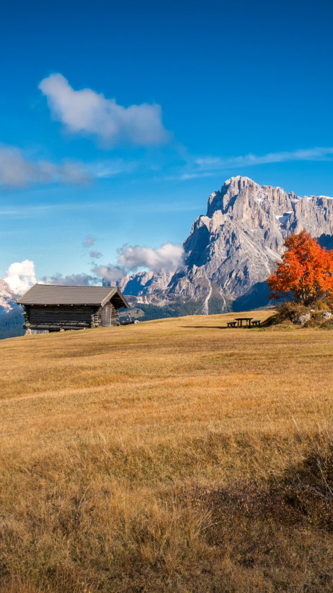 Perfect Autumn landscape from South Tyrol wallpaper 480x854