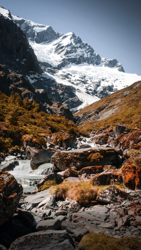 Mount Aspiring National Park, New Zealand wallpaper 480x854