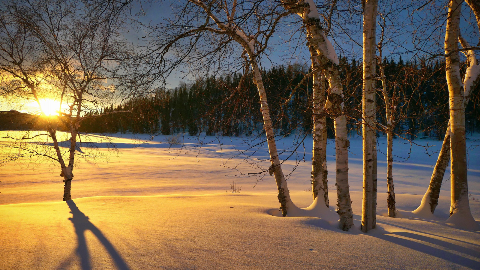 Epic Winter sunset wallpaper 1600x900