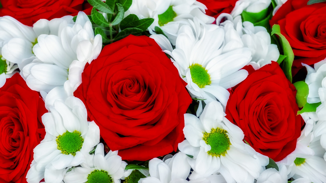 Roses and daisies bouquet wallpaper 1280x720