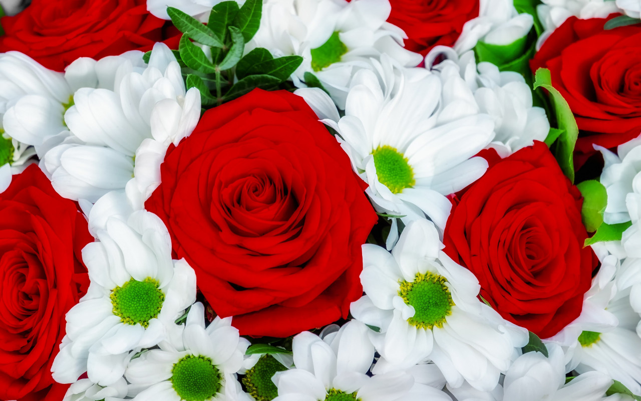 Roses and daisies bouquet wallpaper 1280x800