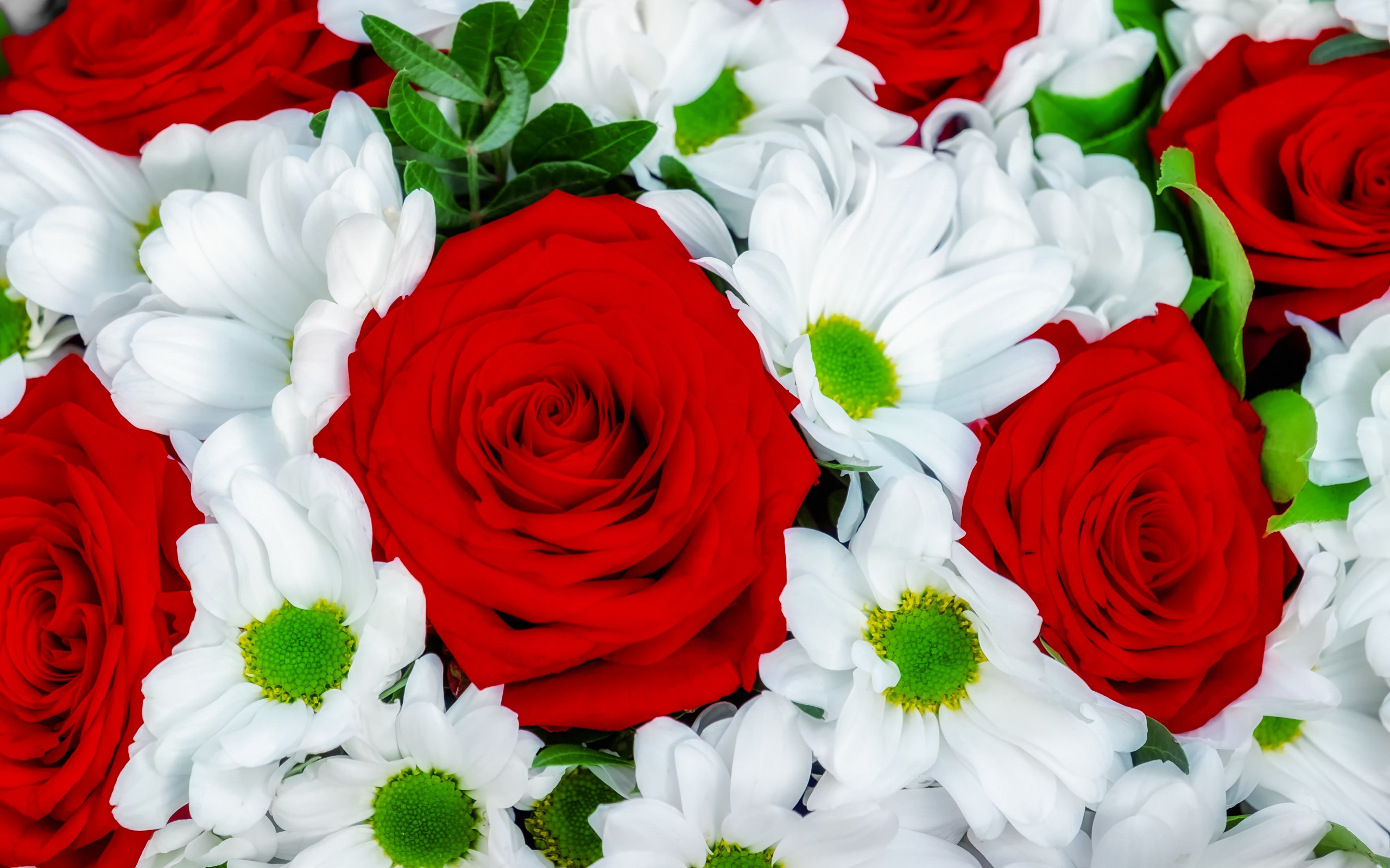 Roses and daisies bouquet wallpaper 2560x1600