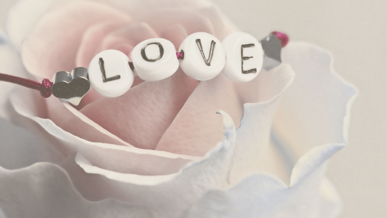 Love bracelet on a white rose wallpaper 1280x720