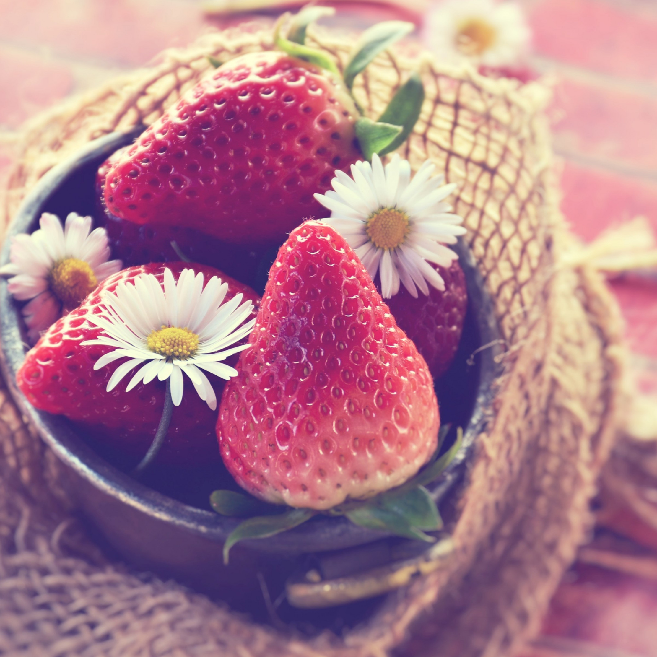 Tasty strawberries wallpaper 2224x2224