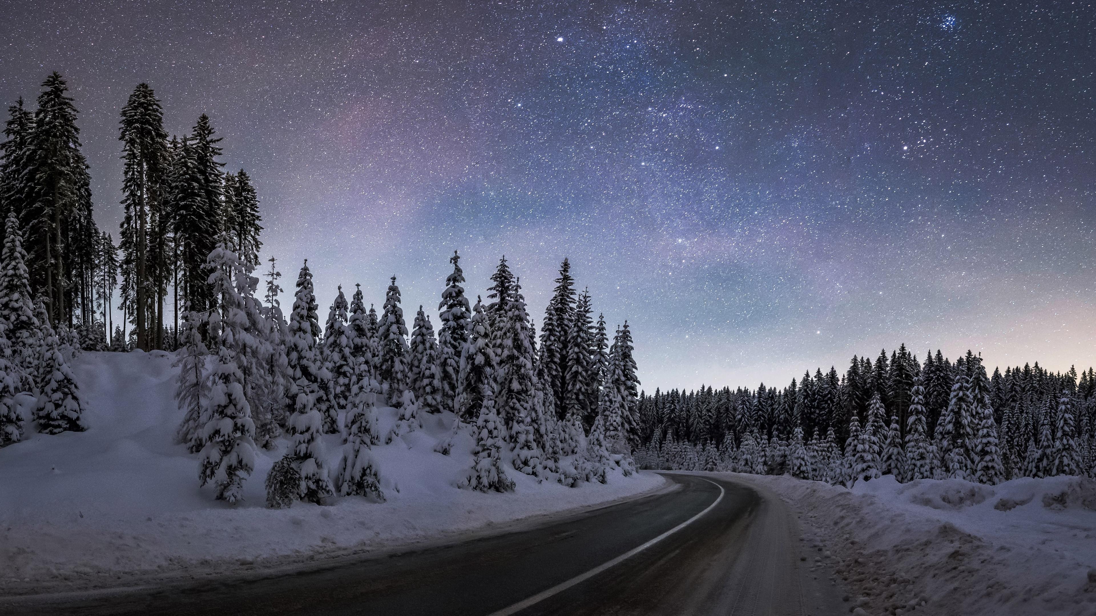 Download Wallpaper Winter Night At Pokljuka Forest 3840x2160