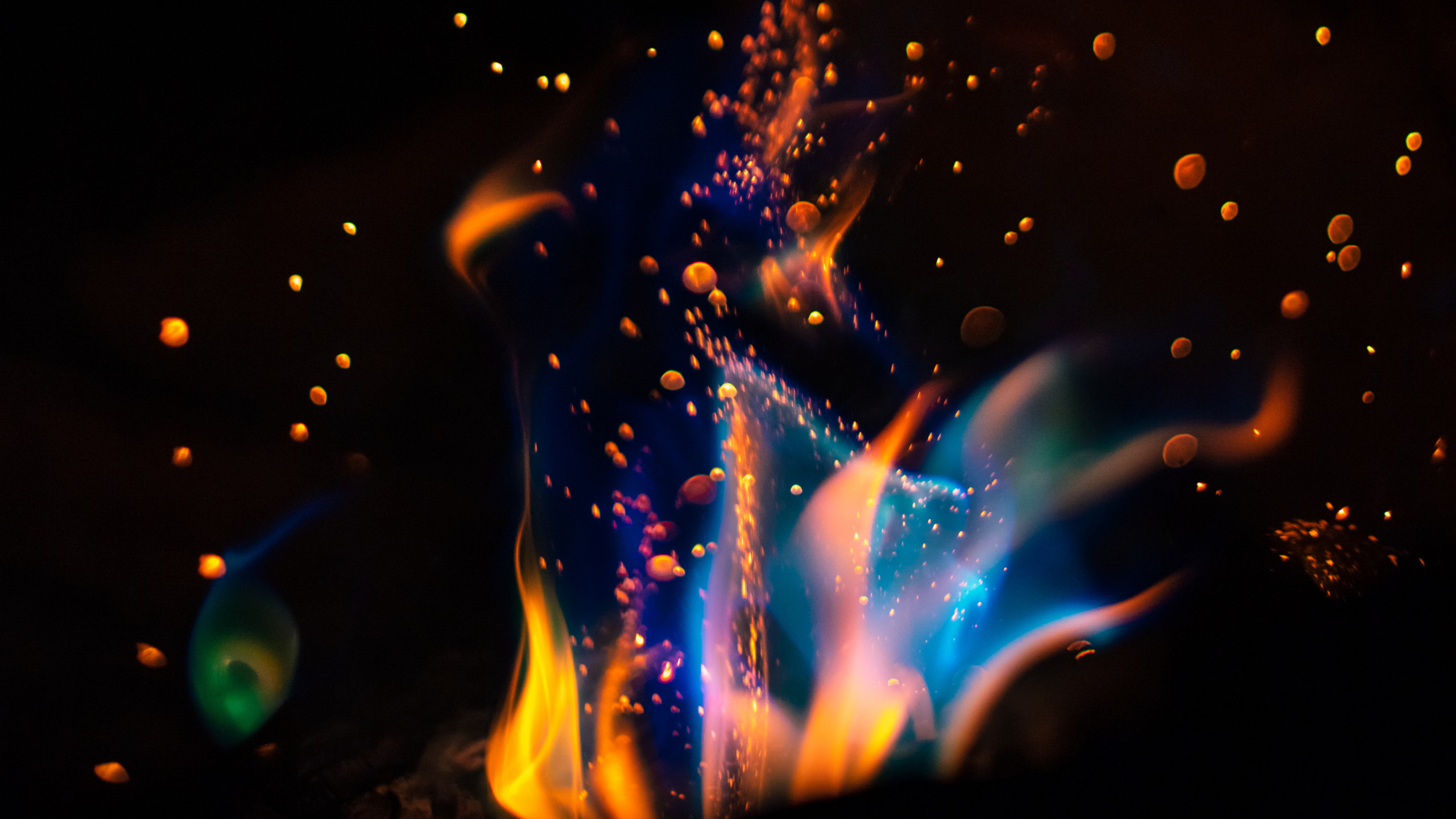 Hot flames in darkness wallpaper 2560x1440