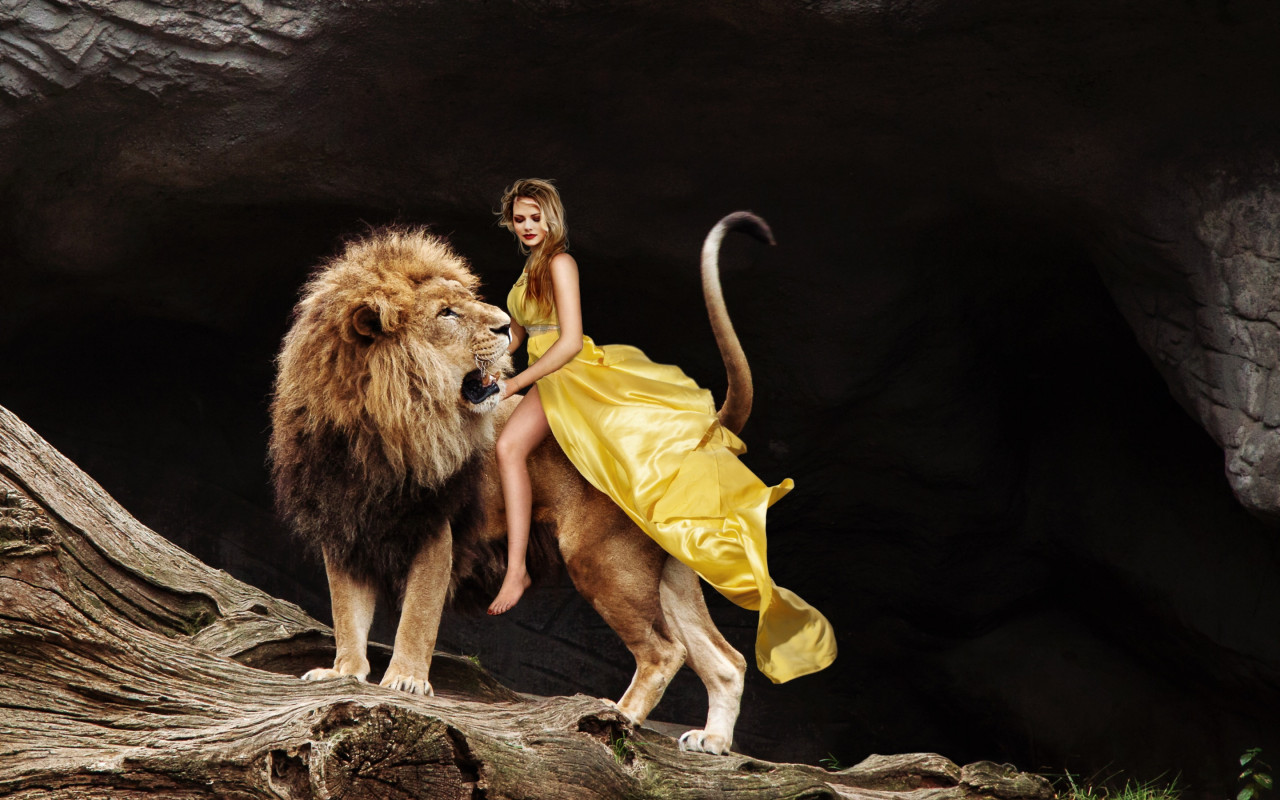 Lady and the Lion King wallpaper 1280x800