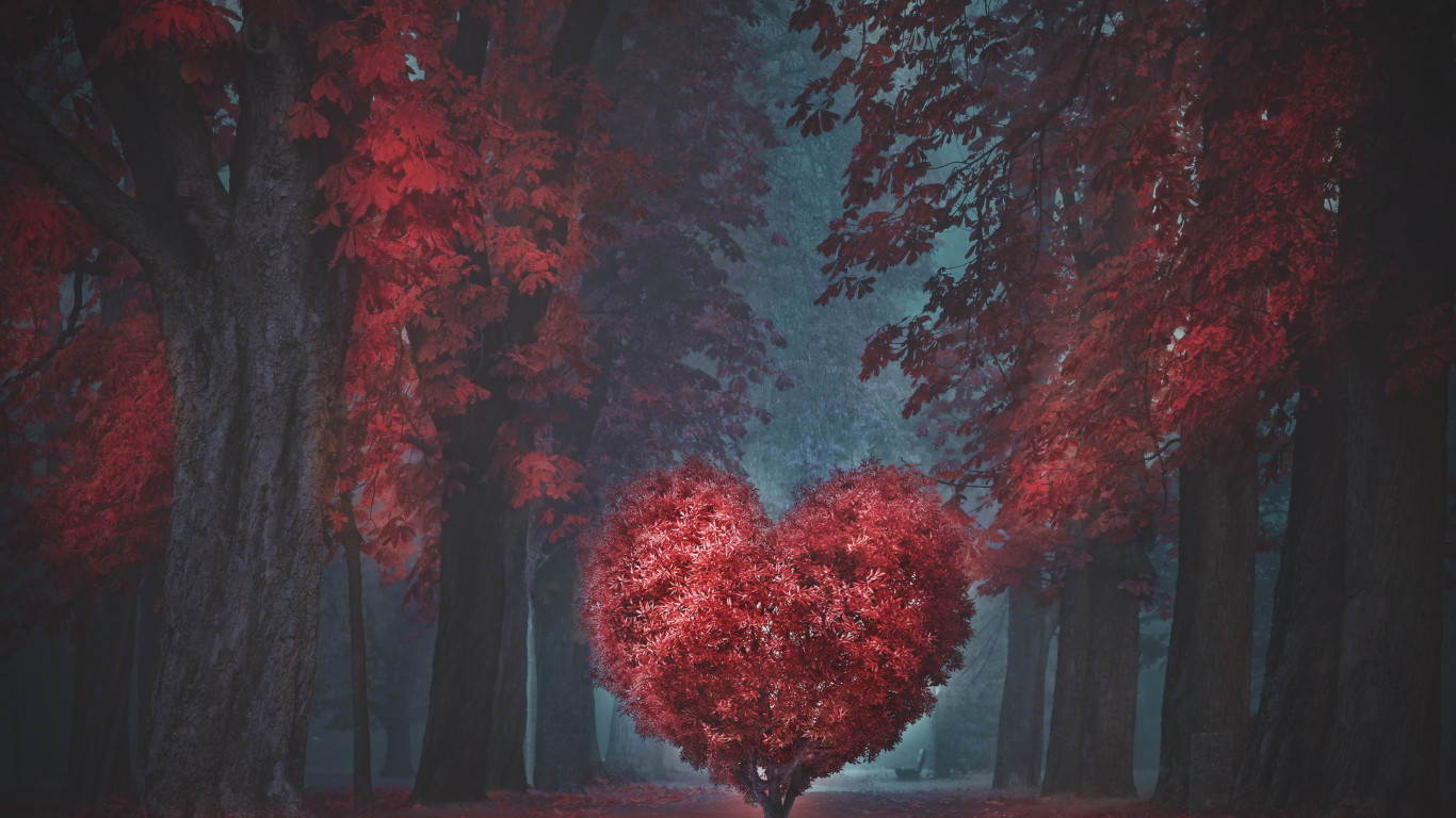 The heart of the forest wallpaper 1366x768