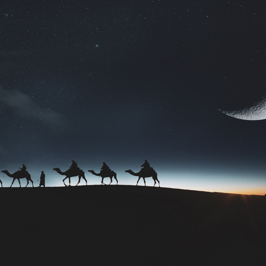 Traveling through desert on camels wallpaper 1024x1024