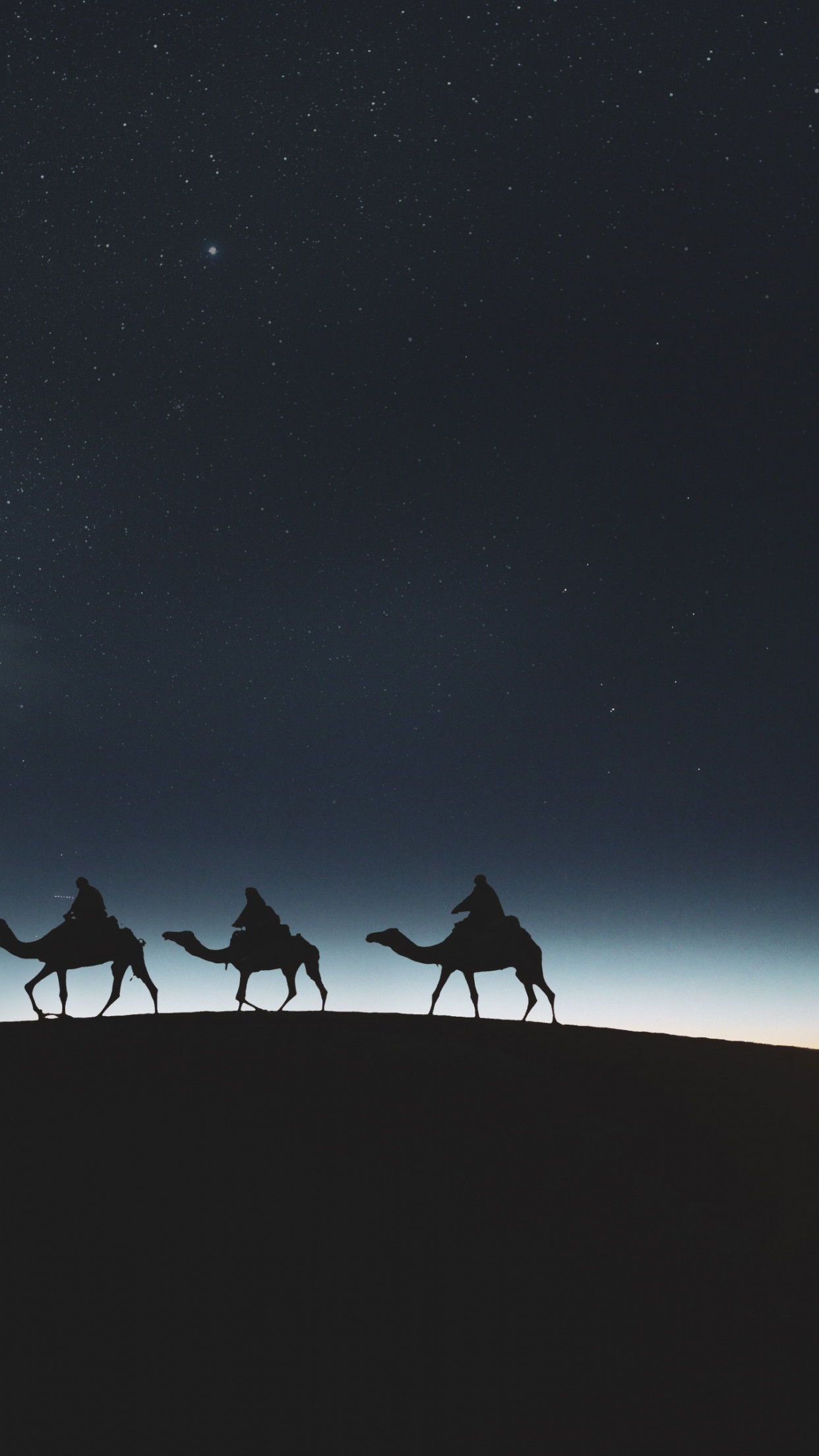 Traveling through desert on camels wallpaper 1242x2208