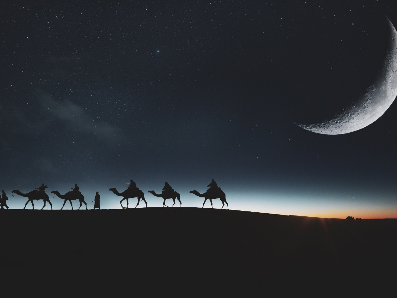 Traveling through desert on camels wallpaper 1280x960