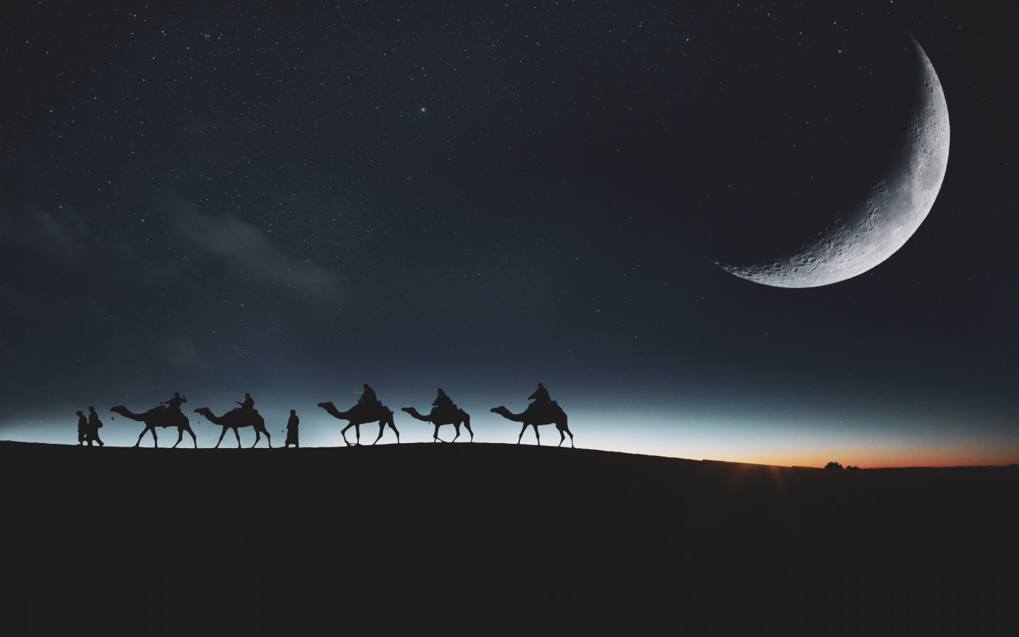 Traveling through desert on camels wallpaper 1440x900