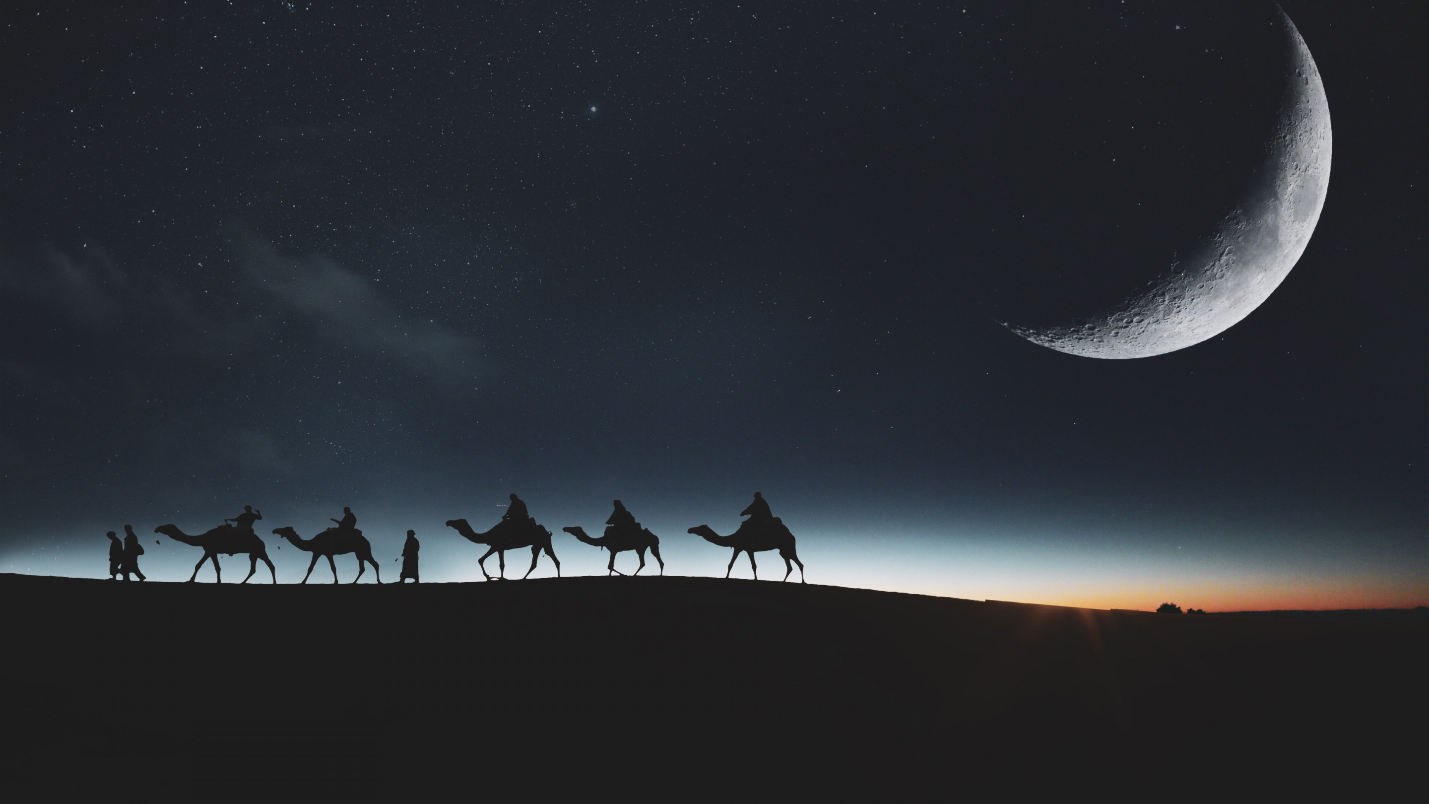 Traveling through desert on camels wallpaper 2880x1620