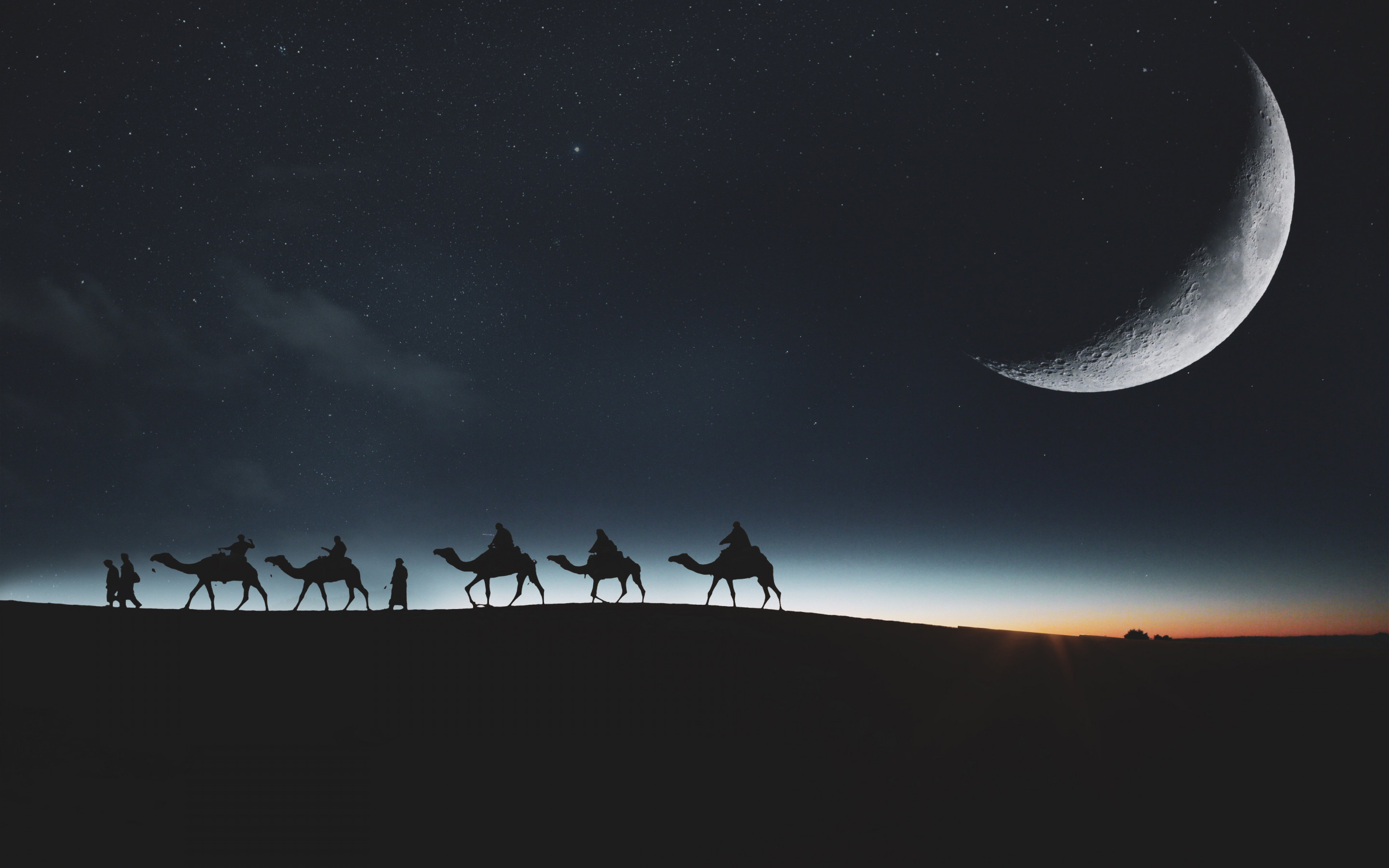 Traveling through desert on camels wallpaper 2880x1800